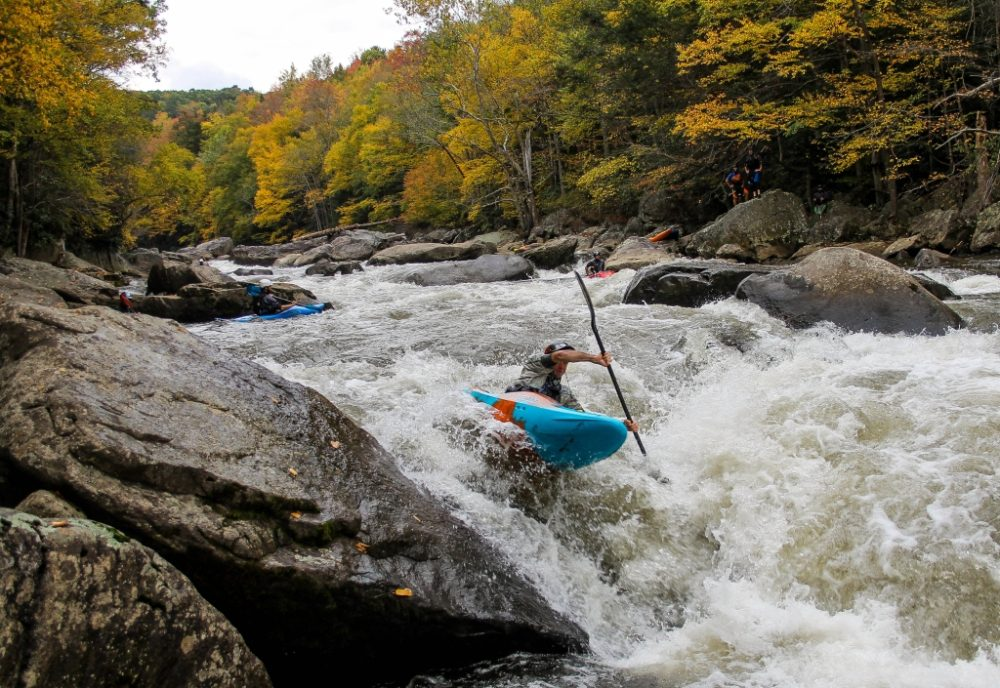 Kayakers on the Yough River